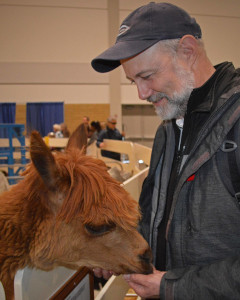 Visionaries member meets an alpaca at the Royal Winter Agricultural Fair. Courtesy: J. Pierce